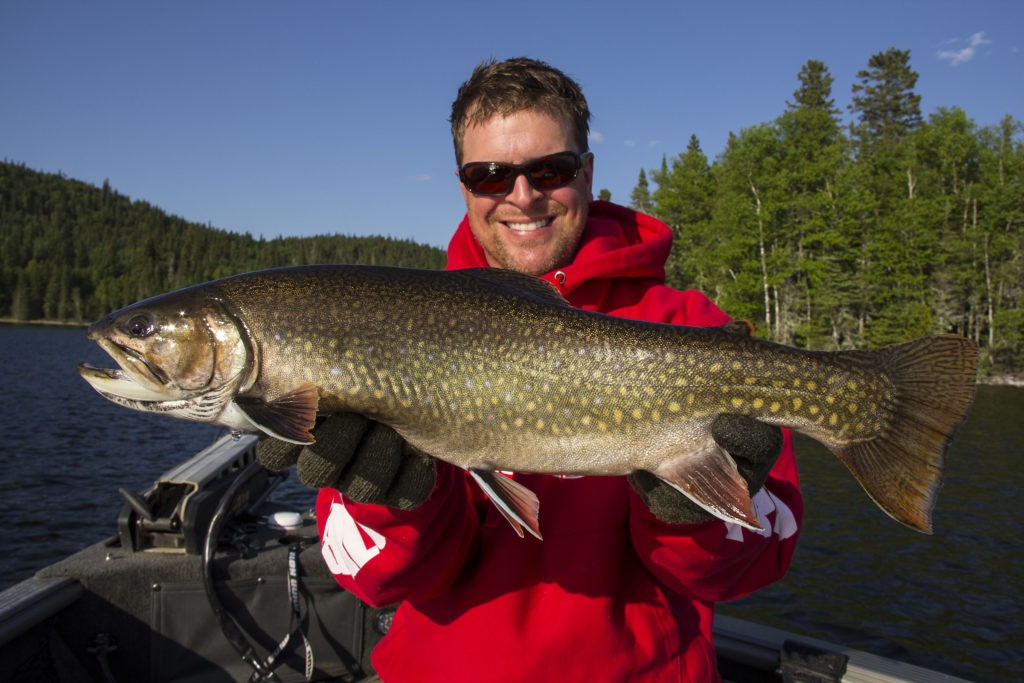 Brook Trout Superior Country